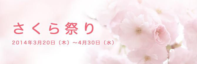 shikyu_1
