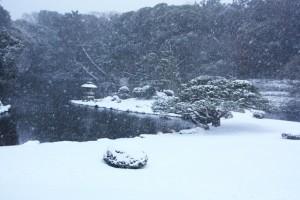 雪の新宿御苑